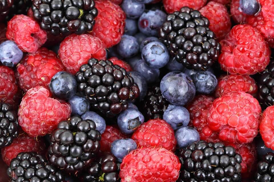 natürliche appetitzügler obst